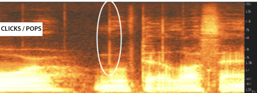 Clicks and pops shown on a spectrogram