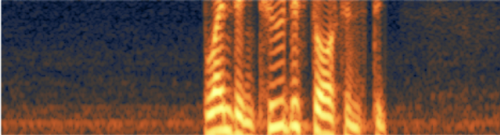 Hiss shown on a spectrogram