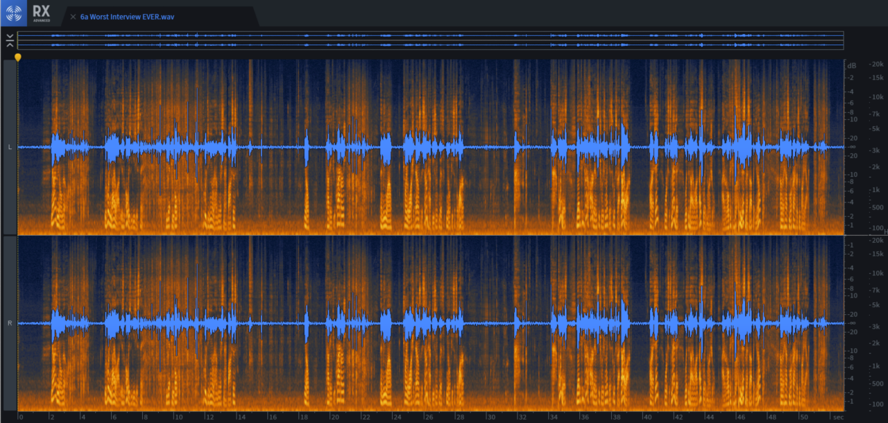 Just looking at this waveform cannot communicate the horror of this interview. Check the audio file if you dare…